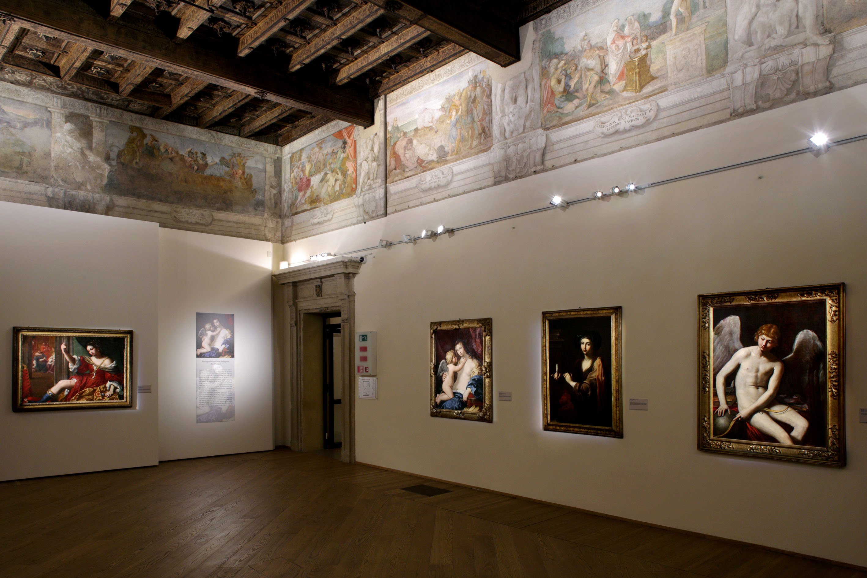 Sala Enea - Palazzo Fava
